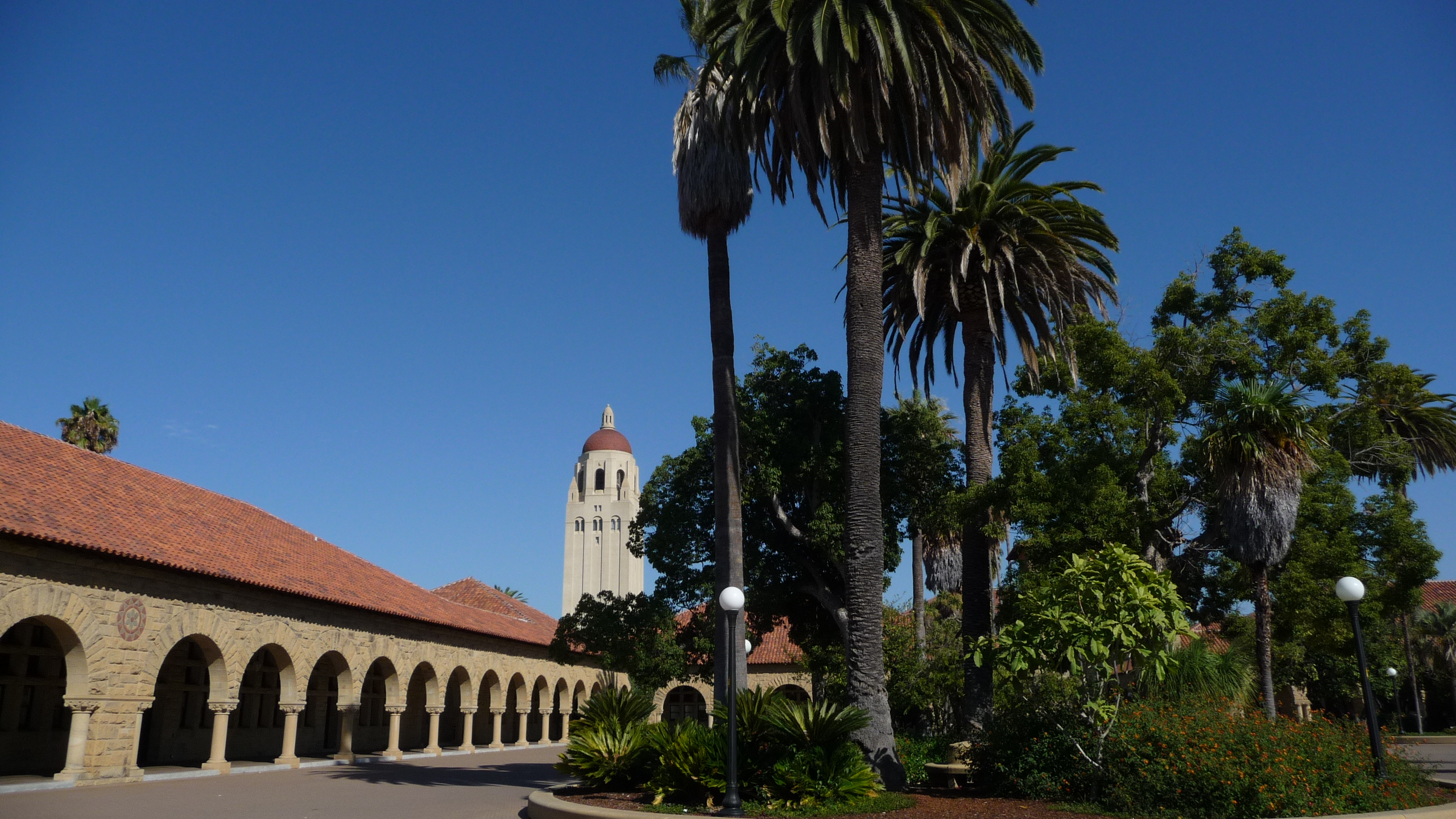 stanford picture 1
