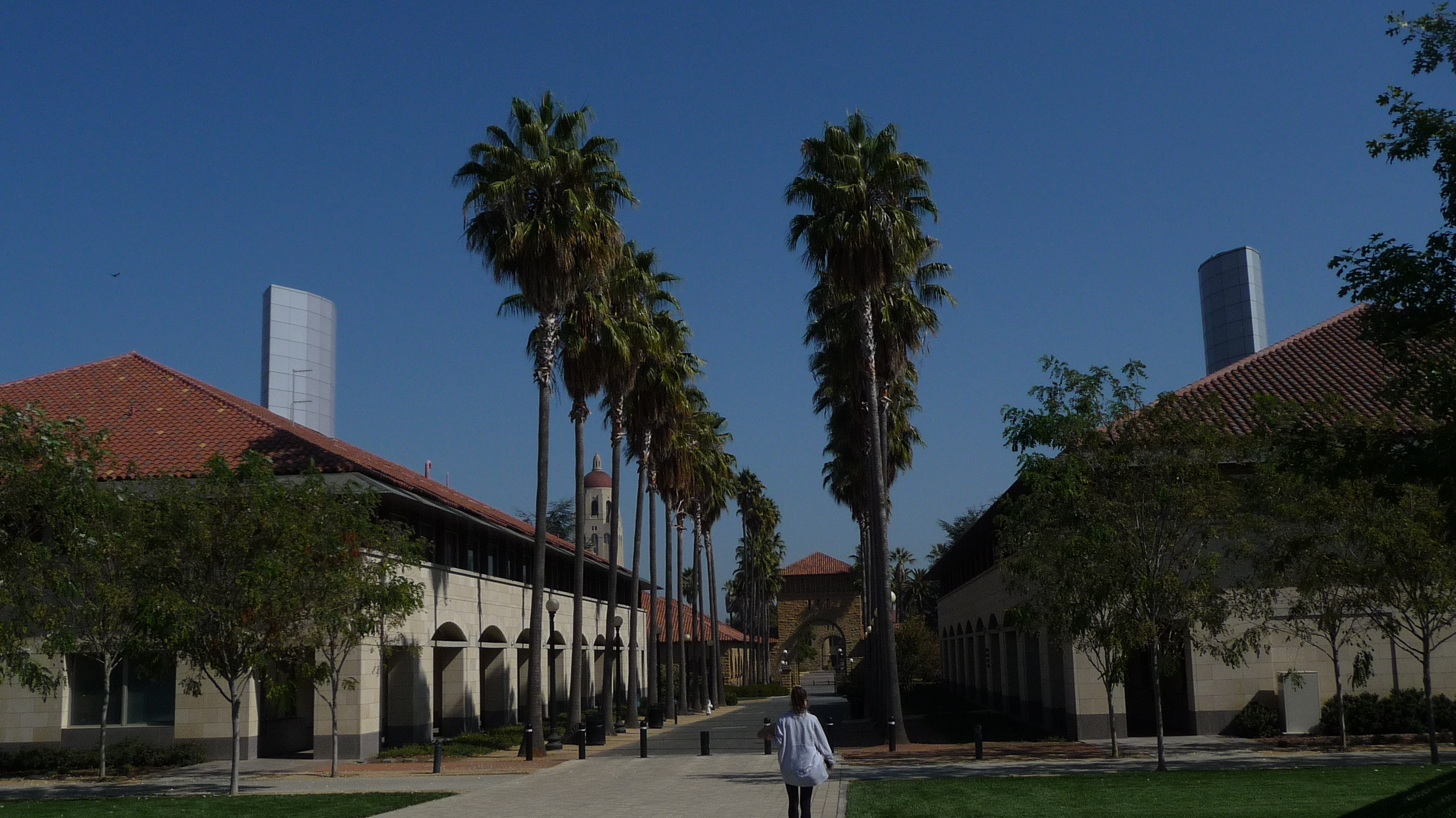 stanford picture 2